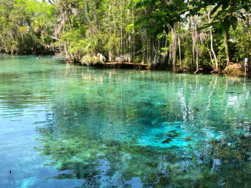 TheCrystalRiver Clear springs
