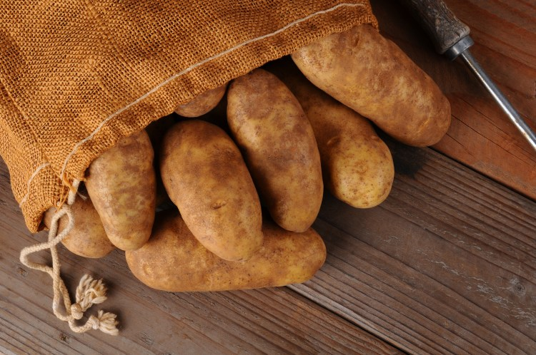 Burlap Sack of Potatoes on Wood