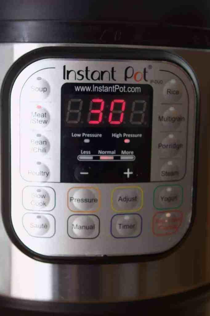 Instant Pot Set to Meat 30 | melissatorio.com