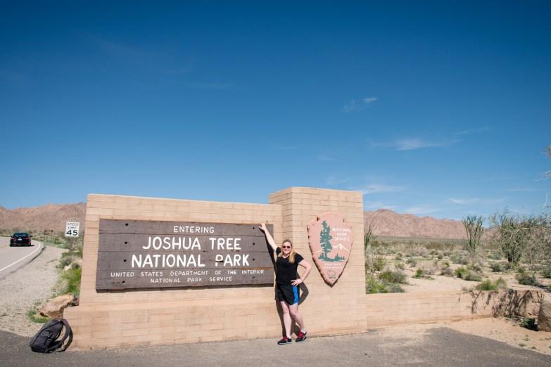 joshua-tree-2