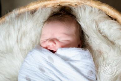 Violet Pearl's Newborn Photos-17