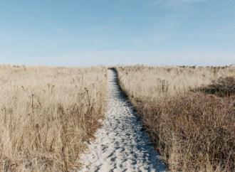 10 Adımda Kurumsal Hayattan Kurtulma Rehberi