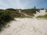 Falserbo, sanddynor