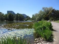 Lötsjön, Sundbyberg