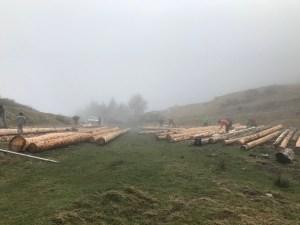 Ecorçage des troncs de sapin pour la cabane pastorale d'Aouéran