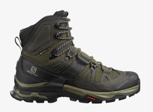 Chaussure de randonnée Quest 4 Gore-Tex Homme