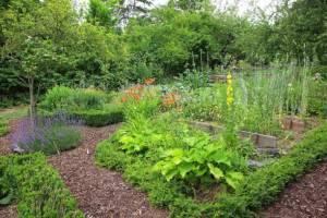 Paillis jardin