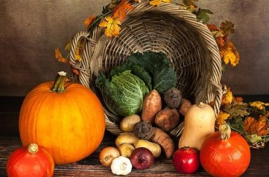 Légumes d'automne bio