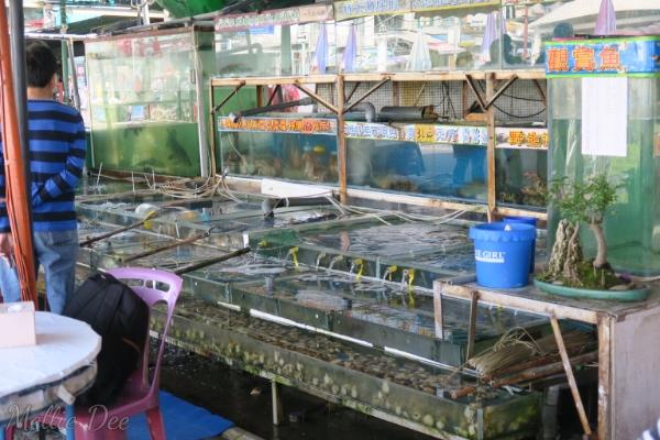 Seafood Restaurant | Cheung Chau, Hong Kong | Fresh Seafood
