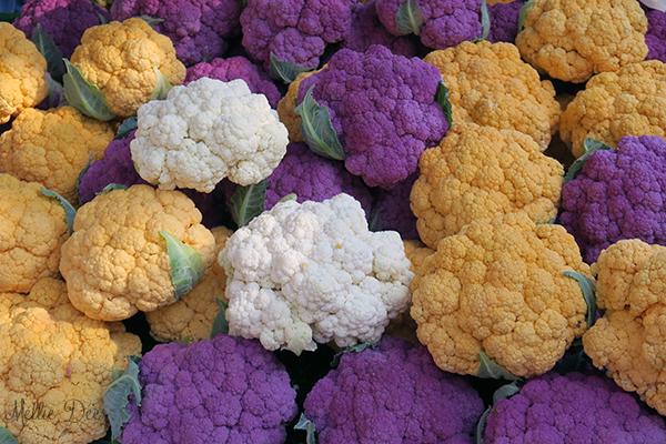 Dane County Farmer's Market | Madison, Wisconsin | Tri-Colored Cauliflower