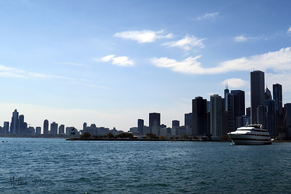 Navy Pier | Chicago, Illinois | Skyline