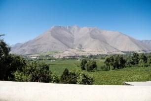 Vicuña et la Vallée de l'Elqui