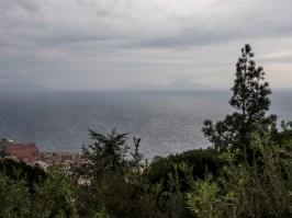 Chartreuse San Martino