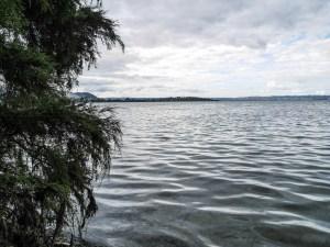 Rotorua, Lac Rotorua