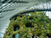 Marina Bay Sands : Cloudforest