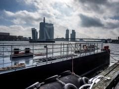 Nieuwe Maas, Rotterdam