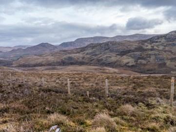 Highlands d'Ecosse
