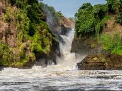 Murchinson Falls National Park-199
