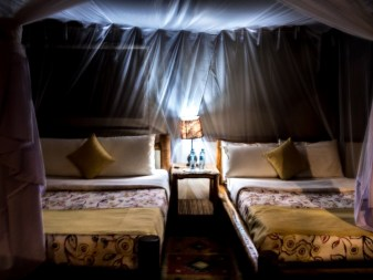 Queen Elizabeth National Park : Isihasha Jungle Lodge