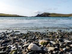 Shetland-28
