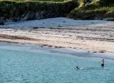 Shetland-34
