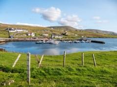 Shetland-9