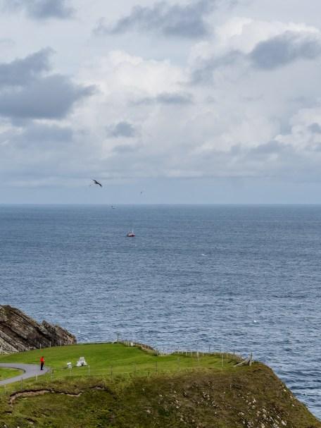 Shetland Mainland Sumburgh Head-5
