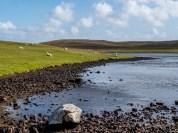 Eshaness Shetland-54