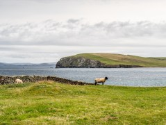 Melby Beach Shetland-5