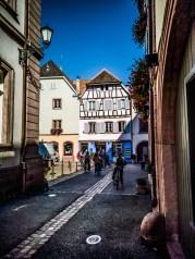 Route des Vins d'Alsace à vélo