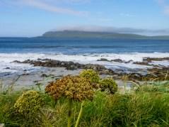 Mainland-Shetland-52