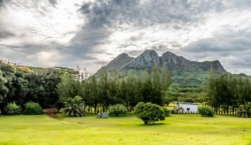 Plantation de litchi à Tubuai