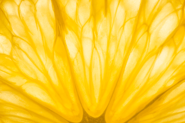 MellyFit Nutrition - Free Discovery Call | macro image showing the yellow colours of the inside of an orange