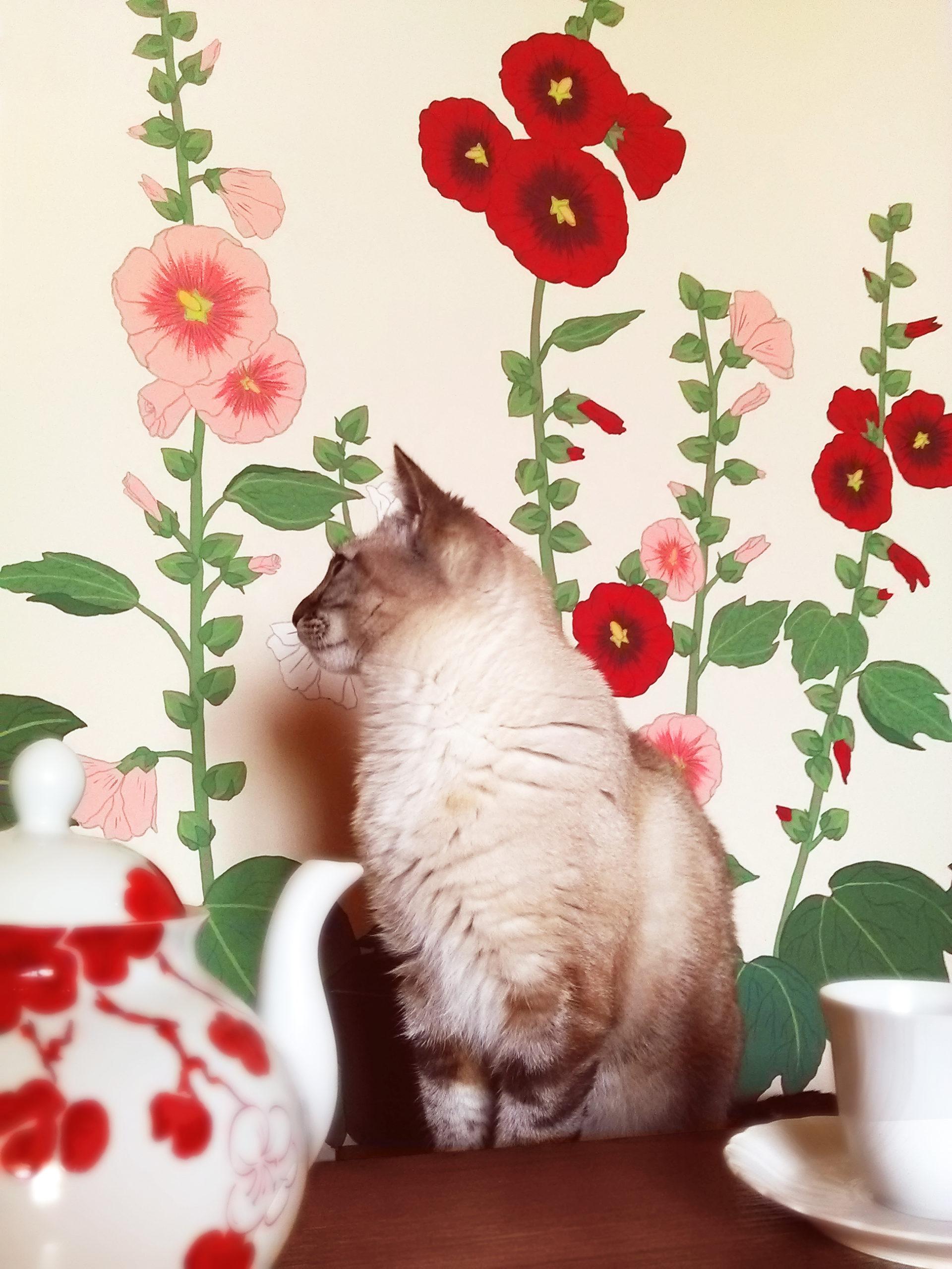 Peinture murale roses tremieres, Assilem décors, peintre en décor Bordeaux, décoration intérieure, peintre décorateur