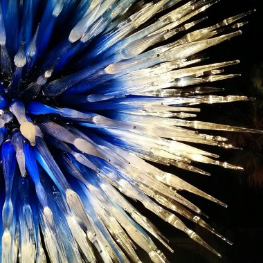 Sapphire Star, 2010