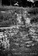 Wells Garden