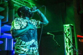 gangstagrass-st-paddys-party-2613