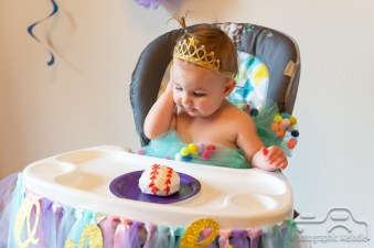 It was a lovely day to celebrate Teegan's 1st Birthday in Seymour, Indiana.