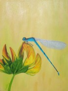 Dragonfly Series (Blue) - NFS • Prints Available