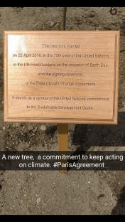 Alla firma del Paris Agreement hanno partecipato i capi di Stato e di Governo mondiali, insieme a personaggi del mondo dello spettacolo fortemente attivi sul fronte del cambiamento climatico come Leo Di Caprio.