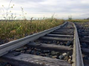 a set of train tracks in an overgrown field curves off into the distance