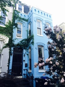 best coffee cities in the United States_Washington D.C._blue house