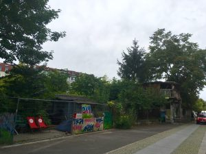 Your walking guide to specialty coffee in Berlin Kreuzberg part 2_the treehouse