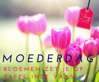 Moederdag 6x inspiratie - Bloemen horen bij moederdag. Een mooie bos tulpen is zo gezellig. Voor Moederdag ga jij de bloemen al in de vaas mooi neer zetten.
