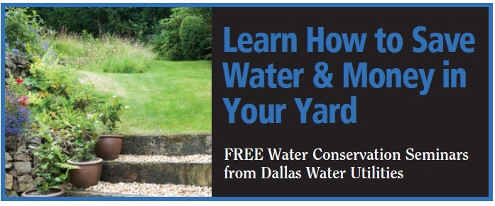 Dallas-water-info