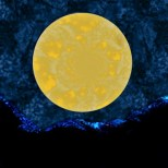Beanth a big yellow moon