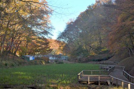 野山北公園