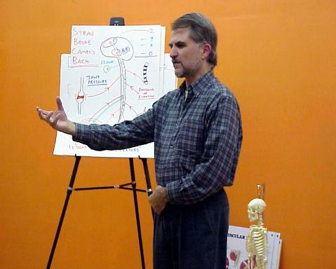 DSL Teaching Anatomy for Structural Bodywork