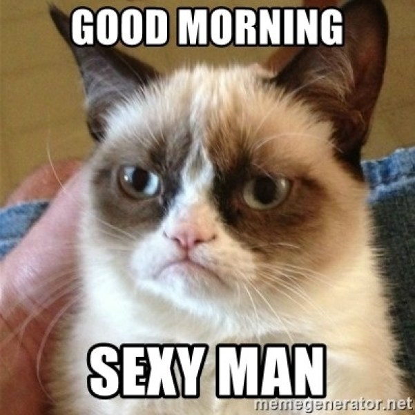 Good morning Sexy man - Grumpy Cat | Meme Generator