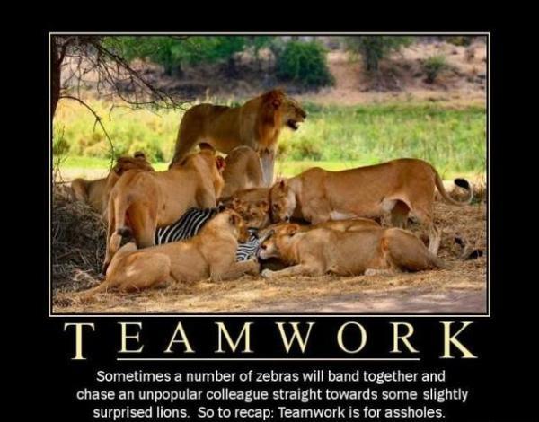 Teamwork - Meme Guy